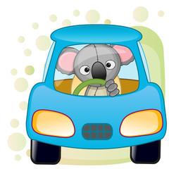 Koala in a car