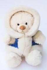 White Teddy Bear in a Fluffy Winter Coat