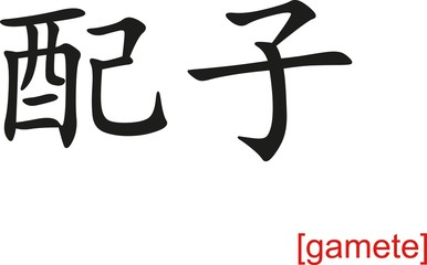 Chinese Sign for gamete