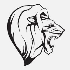 Lion head. Vector.