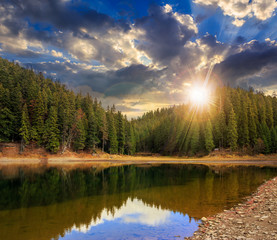 crystal clear lake near the pine forest in  mountains at sunset