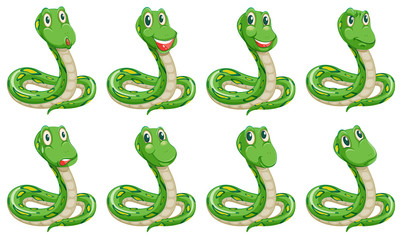 Different snake expressions