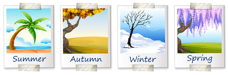 Seasons artwork