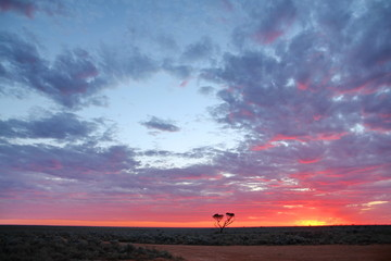 Sunset on the Nullarbor Plain