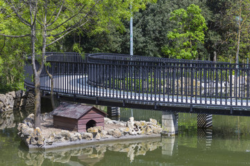 Footbridge over a lake in the park