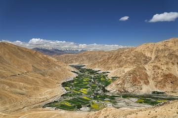 Green valley among desert mountains