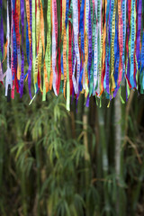 Colorful Brazilian Carnival Wish Ribbons Bamboo Forest Jungle
