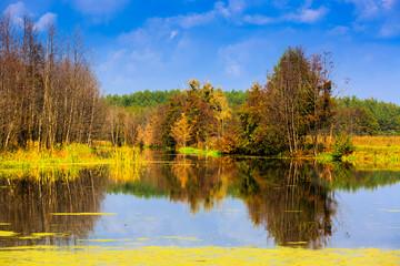 autumn scene on lake