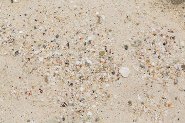 Texture of a sand beach in sunny day