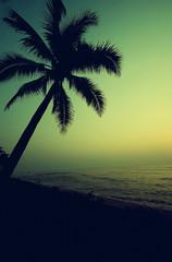 sea sunset vintage