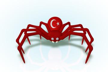 Turkey Flag Spider