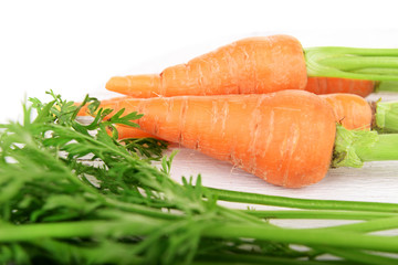 Fresh carrot on wooden stand