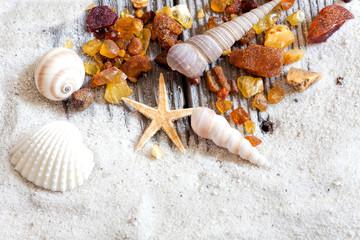 Bernsteinfunde liegen mit Muscheln und Sand auf Holz