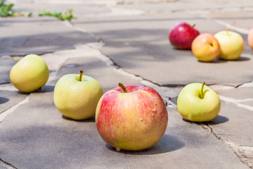 Apples on the track of gray stone