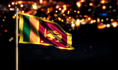 Sri Lanka National Flag City Light Night Bokeh Background 3D
