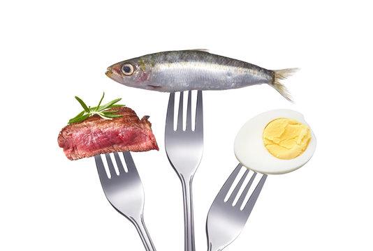Eiweiß und proteinreiche Ernährung