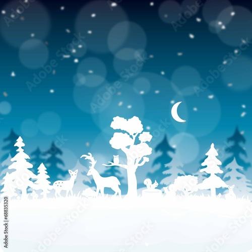 weihnachtsbild winterwald bei nacht stockfotos und. Black Bedroom Furniture Sets. Home Design Ideas