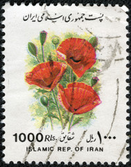 stamp printed in IRAN shows poppy flower