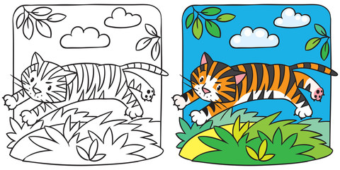 Little tiger coloring book