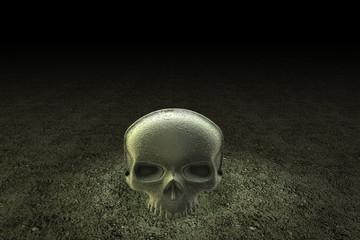 Romeo, The skull