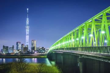 Staande foto Tokyo Tokyo, Japan with Skytree