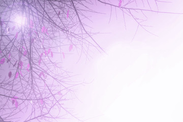 Abstract Purple tree branch background