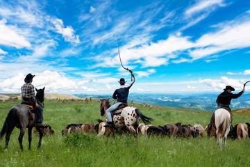 Wall Mural - Three cowboys drive herd of horses