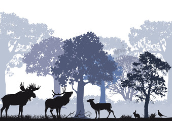 Fototapete - Rotwild mit Elch im Wald