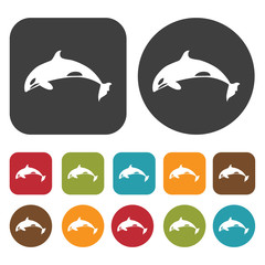 Dolphin. Travel and vacation summer icons set. Round and Rectang
