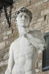 Fototapete - The statue of David in the Piazza della Signoria, Florence