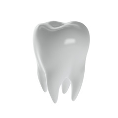 human tooth on a white background