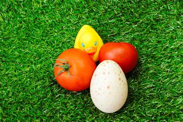 Утка и овощи