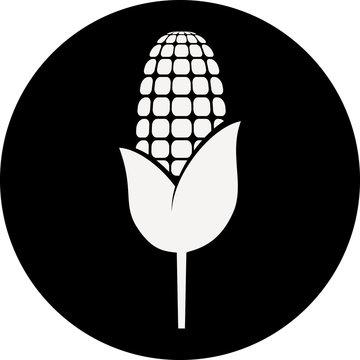 maïs noir&blanc