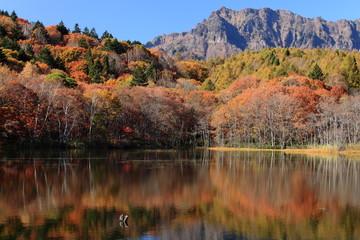 Fototapeten Aubergine lila 秋の戸隠高原 小鳥ヶ池と戸隠山