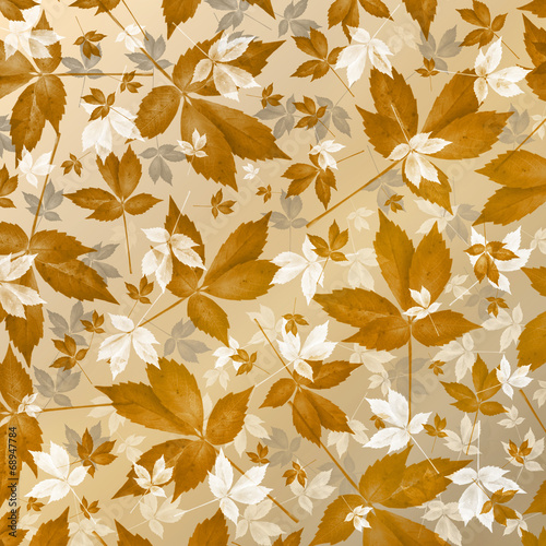 Herbst  Dekoration Stock photo and royaltyfree images