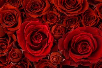 薔薇の花束のクローズアップ