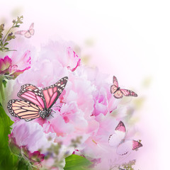 Fototapete - Floral background of roses and butterfly, wild flowers