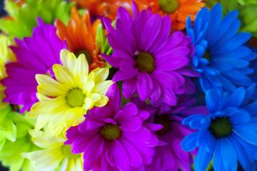 Bright colorful flower bouquet closeup