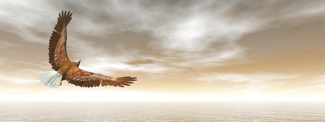 Bald eagle flying - 3D render