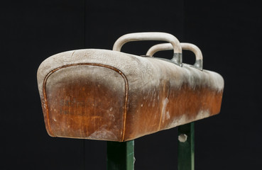 Gymnastic pommel horse