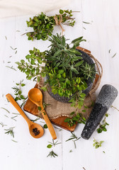 Fresh thyme and sage in mortar over white wooden background