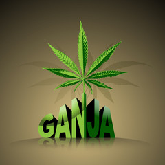 Marijuana worLd