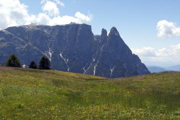 Schlern, Seiser, Alm, Dolomiten,