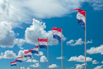 Row of seven Dutch national flags