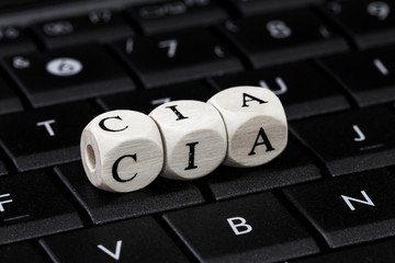 Onlineüberwachung
