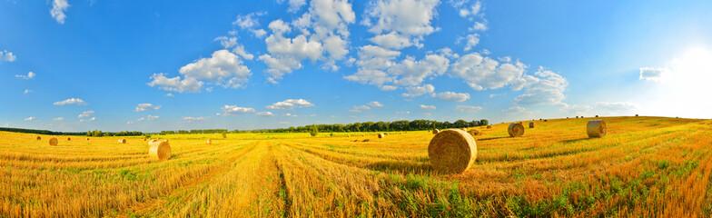 Summer country Fotoväggar