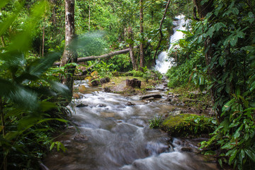 Siriphum waterfall in northern Thailand