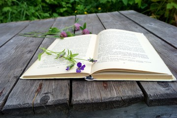 Open book. Reading on nature.