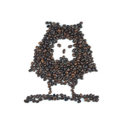 Coffee Beans image Owl