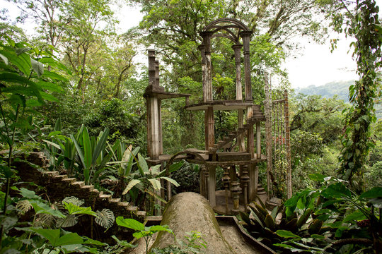 concrete structure with stairs surrounded by jungle